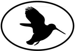 Hummingbird decal from Oval Envy.  Great price for a durable vinyl decal.  We've got animals, beaches, dogs, cats and more!  Search our catalog for your next Euro Oval Decal.