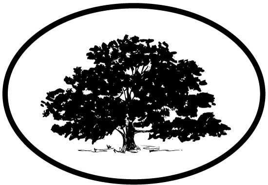 Tree - Deciduous decal from Oval Envy.  Great price for a durable vinyl decal.  We've got animals, beaches, dogs, cats and more!  Search our catalog for your next Euro Oval Decal.