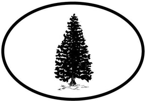 Tree - Evergreen decal from Oval Envy.  Great price for a durable vinyl decal.  We've got animals, beaches, dogs, cats and more!  Search our catalog for your next Euro Oval Decal.