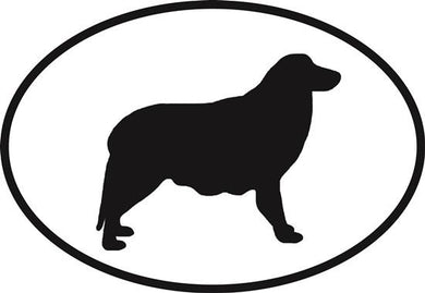 Border Collie decal from Oval Envy.  Great price for a durable vinyl decal.  We've got animals, beaches, dogs, cats and more!  Search our catalog for your next Euro Oval Decal.