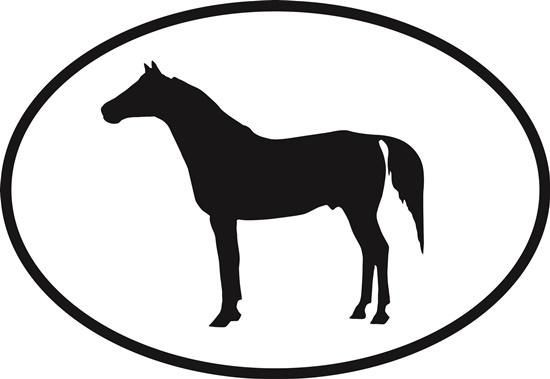 Arabian decal from Oval Envy.  Great price for a durable vinyl decal.  We've got animals, beaches, dogs, cats and more!  Search our catalog for your next Euro Oval Decal.