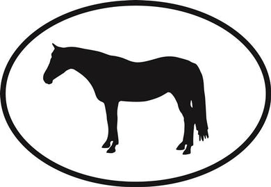 Quarter Horse decal from Oval Envy.  Great price for a durable vinyl decal.  We've got animals, beaches, dogs, cats and more!  Search our catalog for your next Euro Oval Decal.