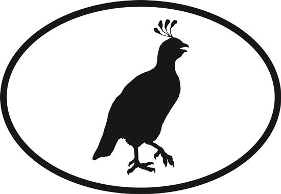 Quail decal from Oval Envy.  Great price for a durable vinyl decal.  We've got animals, beaches, dogs, cats and more!  Search our catalog for your next Euro Oval Decal.