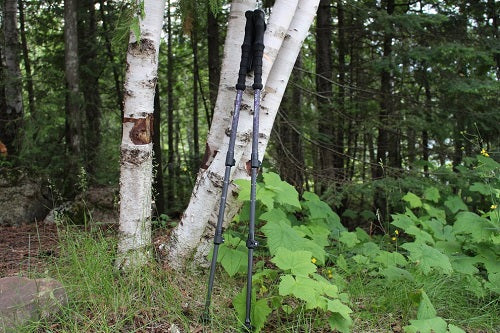 11 Best Ultralight Trekking Poles