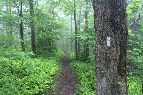 21 Awesome Reasons to Hike the Appalachian Trail