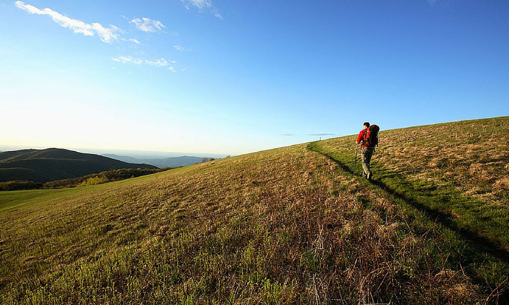 max patch north carolina - best appalachian trail section hikes