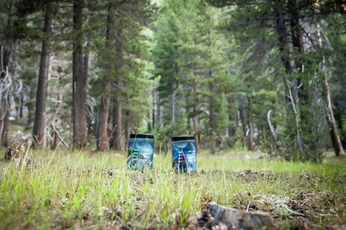 6 Best Bear Canisters for Backpacking
