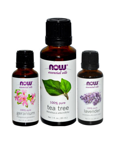 bug insect repellent geranium oil cinnamon oil lavender tea tree oil