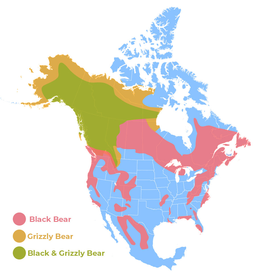 bear map usa population distribution