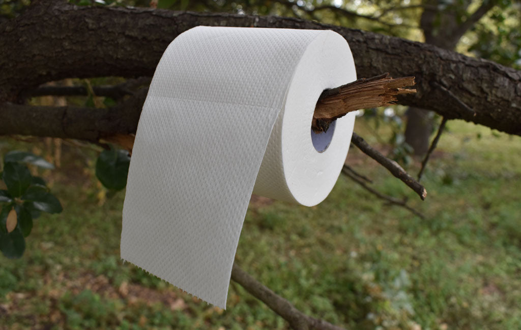 biodegradable toilet paper on tree