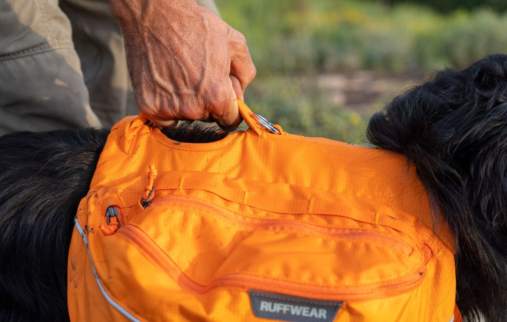 pulling on the handle of a Ruffwear dog pack