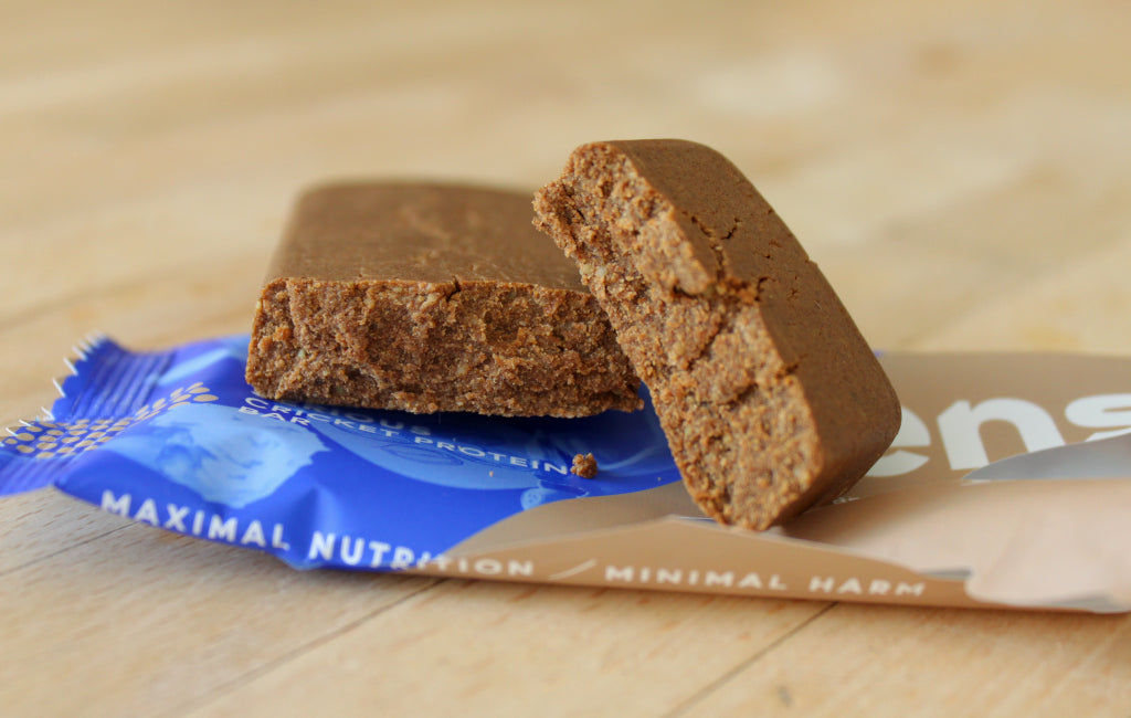 cricket protein bar texture