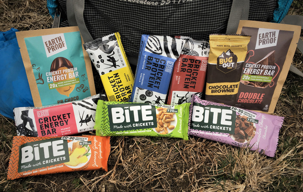 best cricket bars reviewed