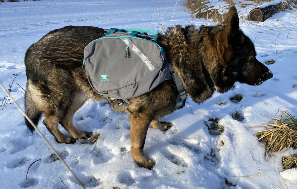 best hiking dog backpacks