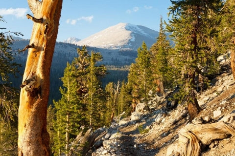 john muir trail interactive map and guide