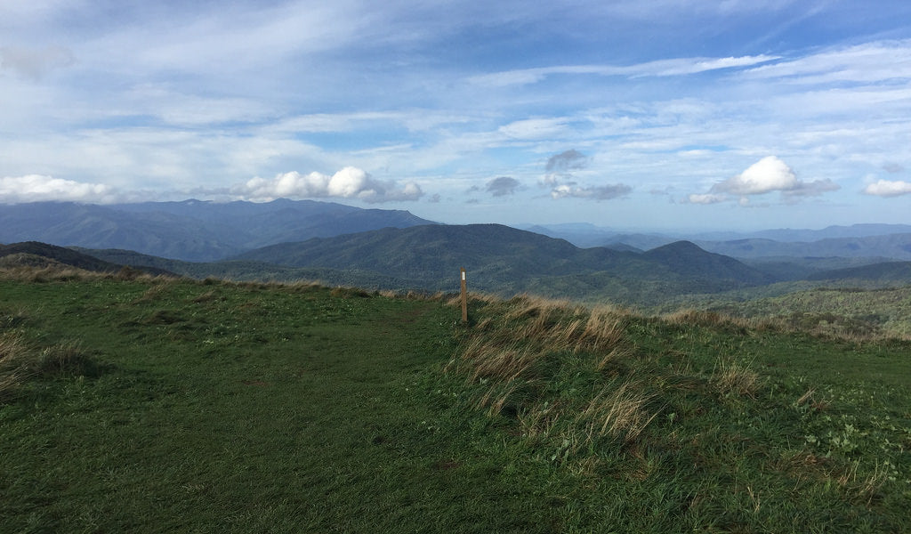 max patch north carolina best appalachian trail section hikes