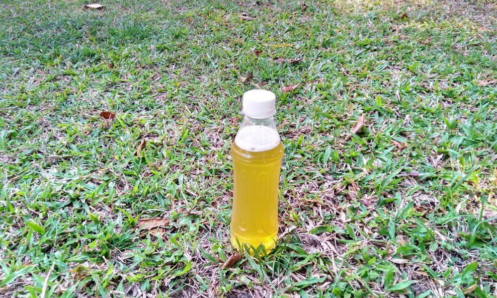 pee bottle for backpacking and hiking outdoors