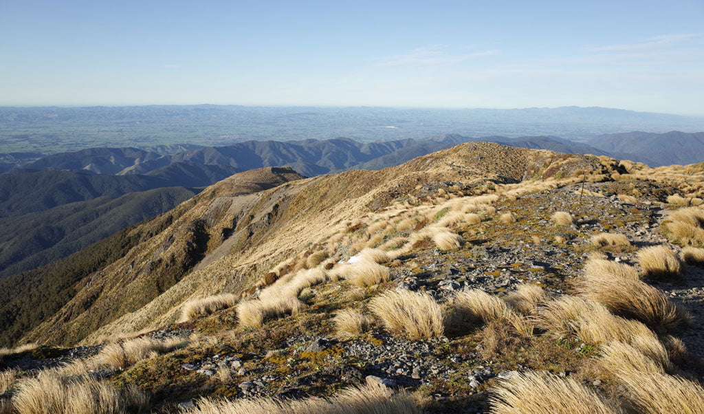 te araroa epic trails worldwide