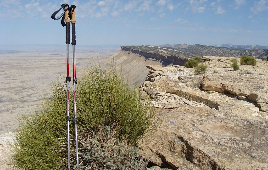 ultralight trekking poles against tree