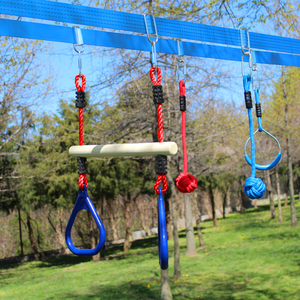 Monkey Bar with Gym Rings attached