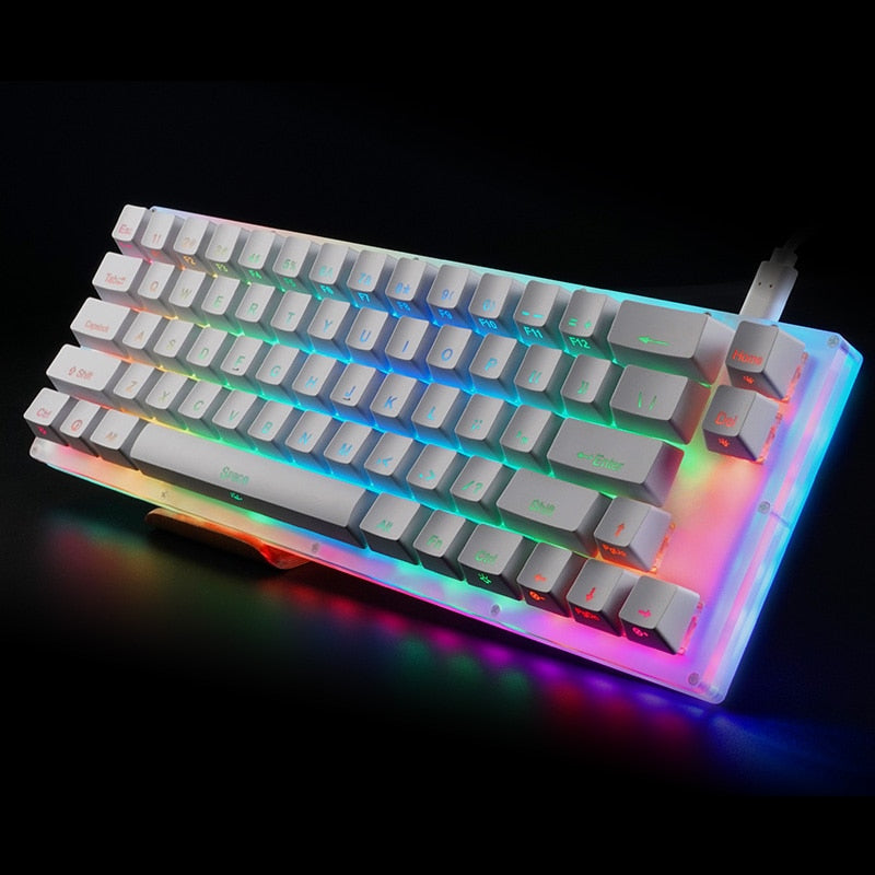 Womier 66 key Custom Mechanical Keyboard