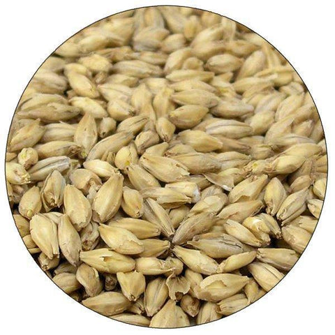 2-Row Pale Ale Malt (Haus Malts)