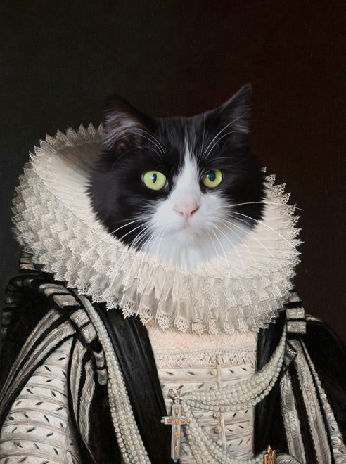 portait d'un chat persan en costume d'archiduchesse
