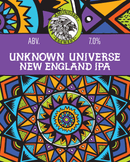 Unknown Universe