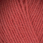Encore (Worsted) - Living Coral