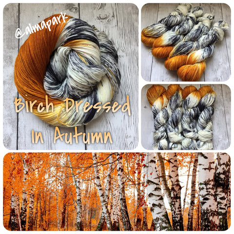 Birch Dressed in Autumn™ Speckled Fing/Sock Hand Paint - 463 yds RTS (1008)