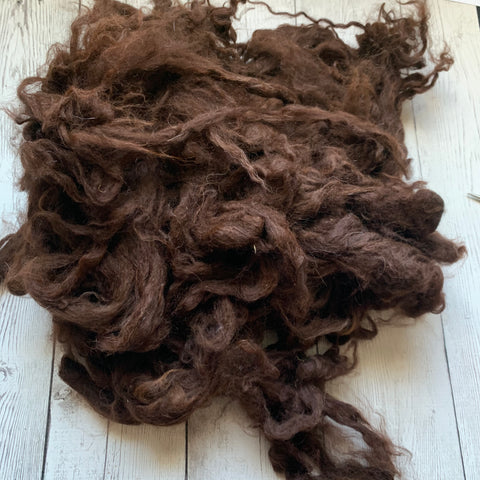 "Washed Raw Fiber ALPACA - Chocolate Brown  from ""Blaze""  4 oz"