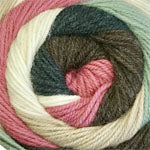 HOT CAKES - (worsted) - 006 - Garden Mix