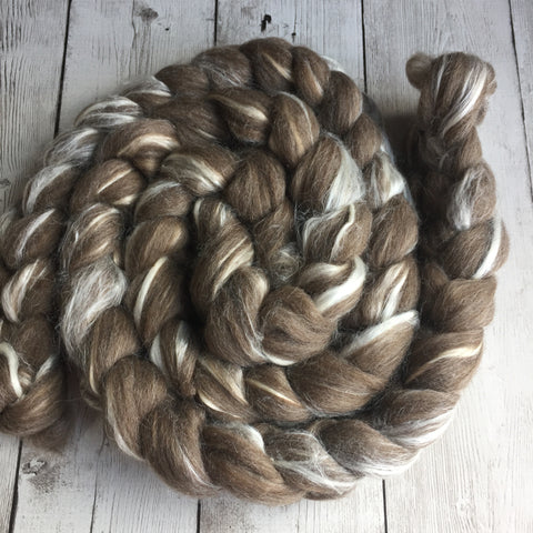 BFL Wool/Tussah silk Top - undyed natural brown - 4 oz