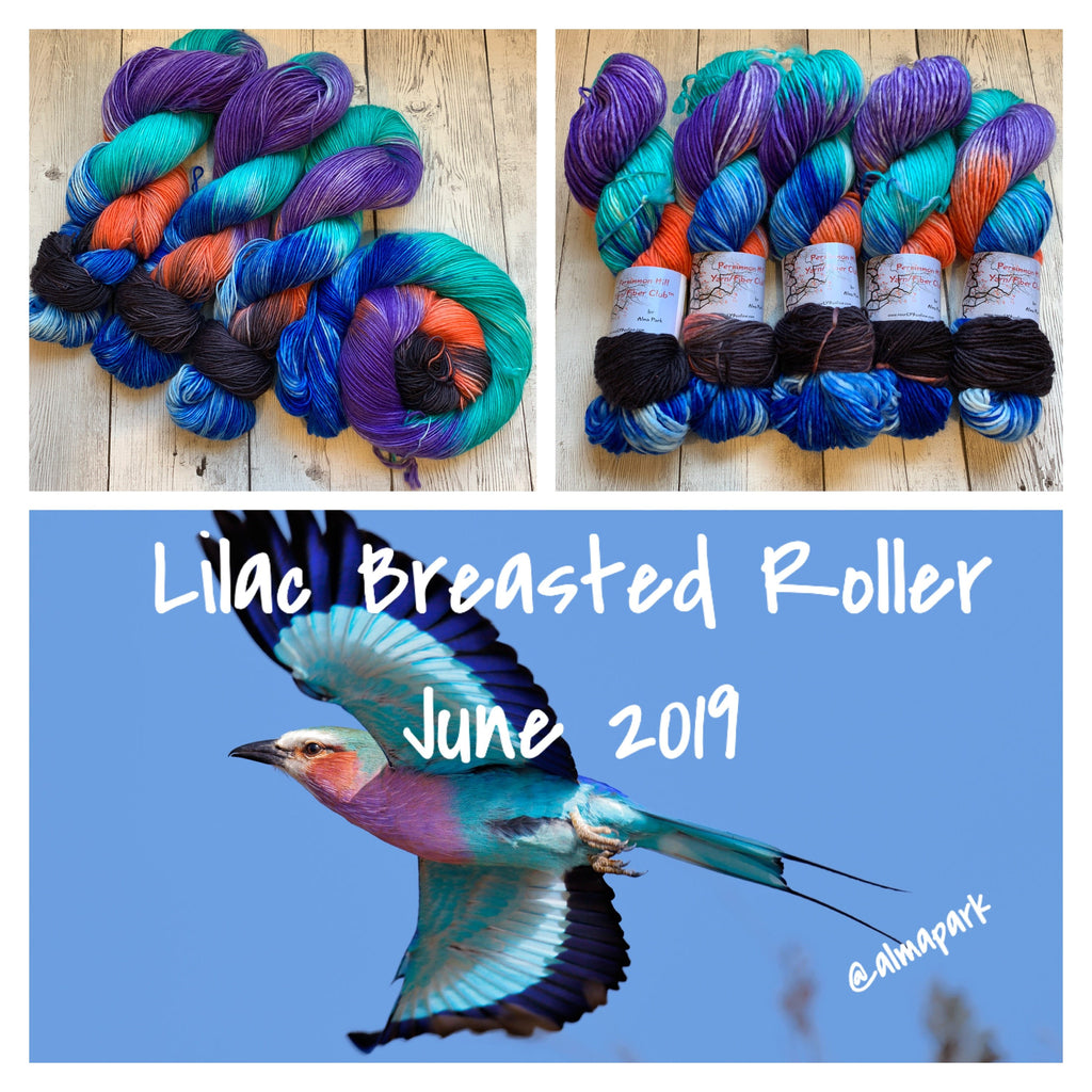 SOCK WEIGHT - LILAC BREASTED ROLLER™ Kettle Dyed  Hand Paint - 400 yds  SINGLE RTS