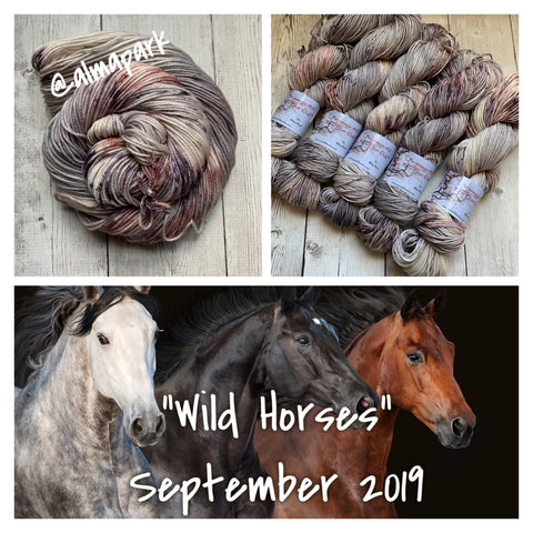 WILD HORSES ™ Persimmon Hill Yarn of the Month -  Hand Painted RTS (030820)