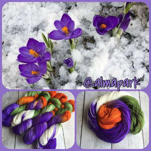 Crocus in the Snow™-  Fing/Sock Hand Painted 463 yds or minis RTS (903)