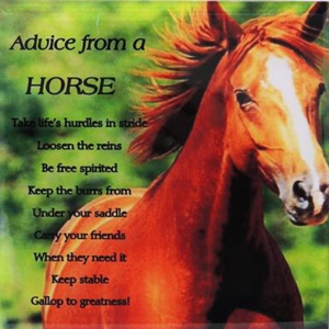 Advice from a Horse Plaque