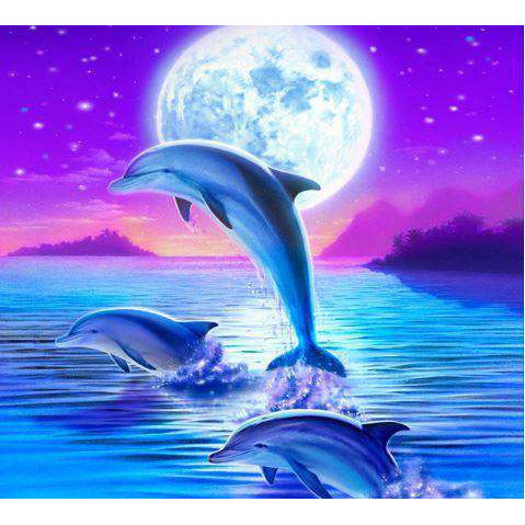 Diamond Art Picture Half Drill Size 30X30 Full Moon Dolphins
