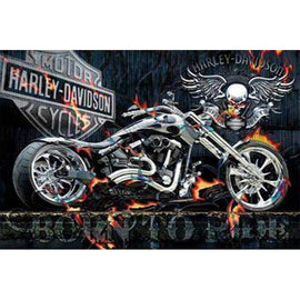 Diamond Art Picture Full Drill Size 35X45 Ghost Rider