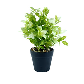 Artificial Plant- White Style 32 15cm