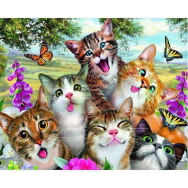 Diamond Art Picture Full Drill Size 40X50 Cat Gang
