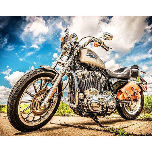 Diamond Art Picture Full Drill Size 40X50 Harley Ghost