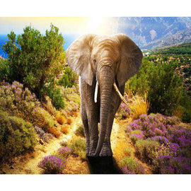 Diamond Art Picture Full Drill Size 40X50 Wild Elephant