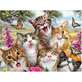 Diamond Art Picture Full Drill Size 50X65 Cat Gang