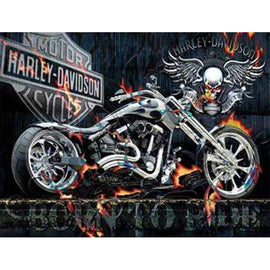 Diamond Art Picture Full Drill Size 50X65 Ghost Rider