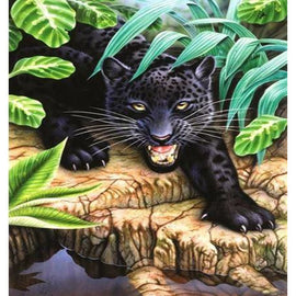 Diamond Art Picture Half Drill Size 30X40 Black Panther