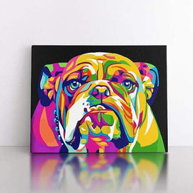 40x50cm  Colourful Bulldog
