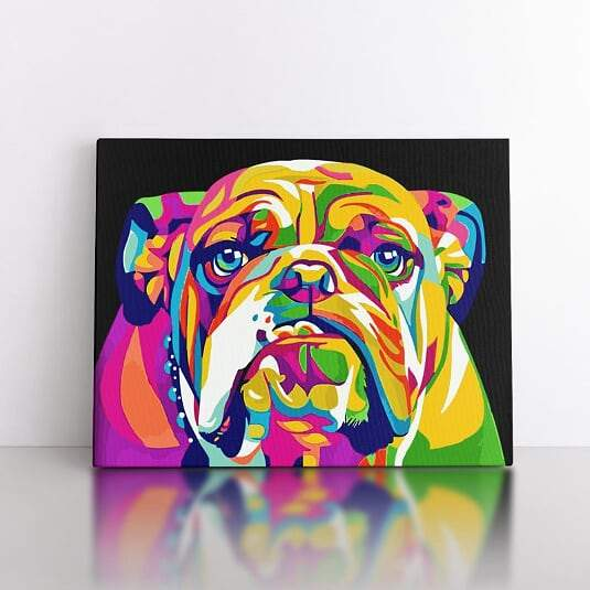 PaintbyNumber-40x50cm  Colourful Bulldog