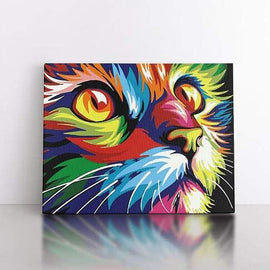 Paint By Numbers- 50x70cm  Colourful Cat