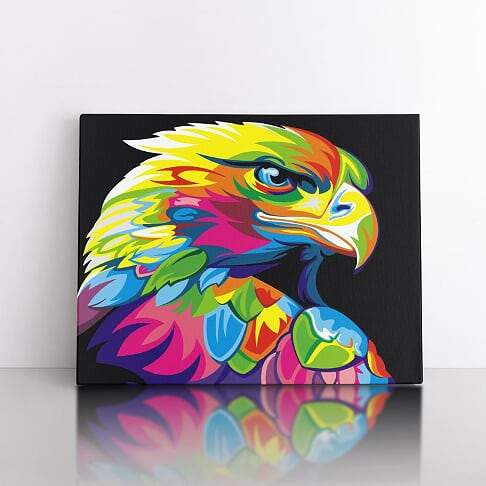 PaintbyNumber-40x50cm  Colourful Eagle